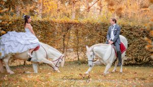 couleur d'automne postproduction cgregphoto
