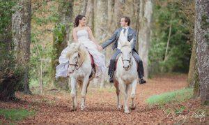 shooting photo a cheval cgregphoto photographe saint gilles croix de vie
